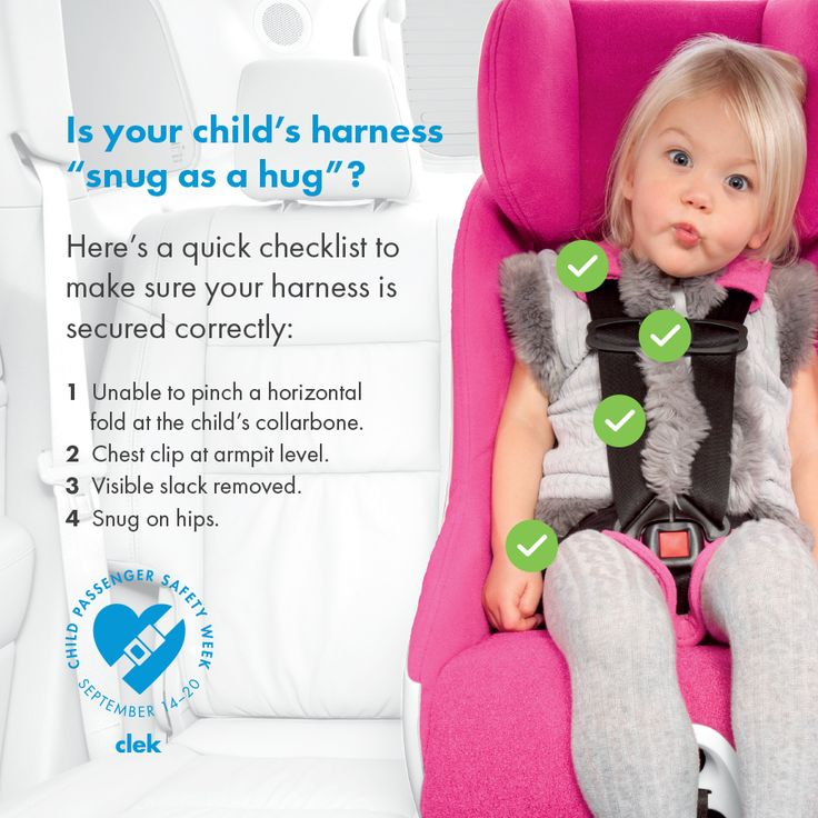 How to pick the proper car seat for your vehicle | Wadsworth ...