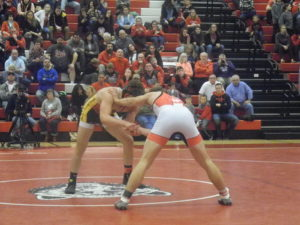 Wadsworth sending 6 to State Wrestling Tournament.